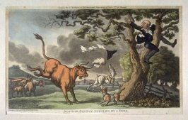 Dr. Syntax Pursued By a Bull, from Combe's 'The Tour of Dr Syntax in Search of the Picturesque'