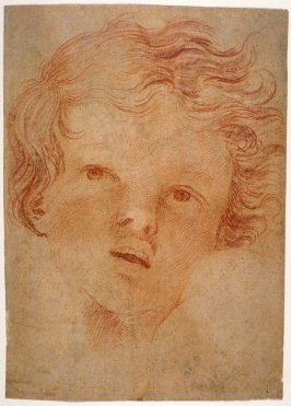 Head of a Boy (Angel?)