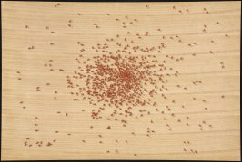 Trial Proof for Swarm of Red Ants