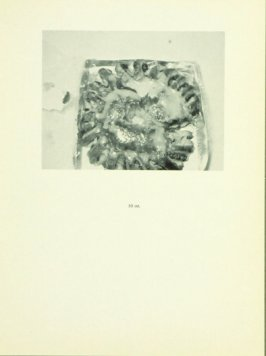 Untitled, illustration 4, in the book Babycakes with Weights (New York: Multiples, Inc., 1970)