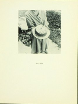 Untitled, illustration 17, in the book Babycakes with Weights (New York: Multiples, Inc., 1970)