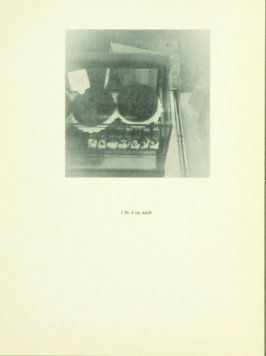 Untitled, illustration 21, in the book Babycakes with Weights (New York: Multiples, Inc., 1970)
