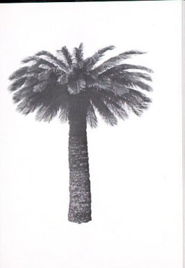 "Illustration 3, recto to ""6675 Franklin Ave.,"" in the book A Few Palm Trees (Hollywood: Heavy Industry Publications, 1971)"