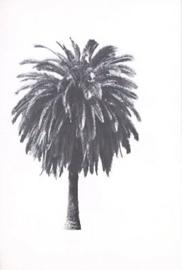 "Illustration 6, recto to ""S. W. corner of Beachwood Dr. & Graciosa Dr.,"" in the book A Few Palm Trees (Hollywood: Heavy Industry Publications, 1971)"