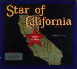 Orange crate label-Star of California Brand