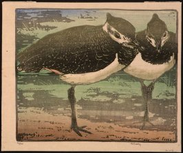Untitled (Two Standing Birds)