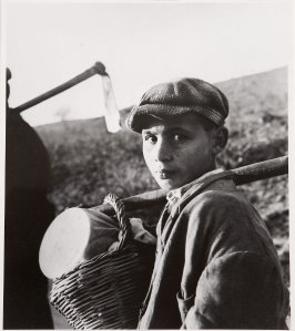 Boy With a Basket, Italy