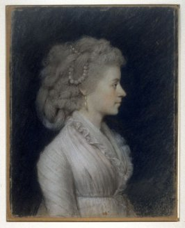 Catherine Livingston Thorn Johnson (Mrs. Horace Johnson)
