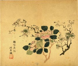 Plum and Camellia, No.18 from the Volume on Plums - from: The Treatise on Calligraphy and Painting of the Ten Bamboo Studio