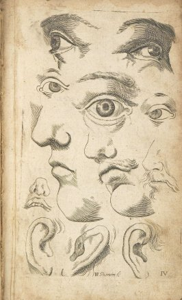 Illustration 4 in the book Polygraphice: The Arts of Drawing, Limning,Painting &c. by William Salmon (London: Thomas Passinger and Thomas Sawbridge, 1685)