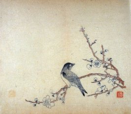 Bird, looking right on plum branch, No.19 from Volume I(1+2) on Miscellaneous Subjects - from: The Treatise on Calligraphy and Painting of the Ten Bamboo Studio