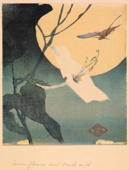 Moonflower and Hawkmoth