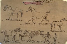 Children's drawing of horses