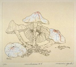 Mushrooms No. 4