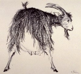 The Goat, extra plate from the book Natural History (Cambridge, Mass.: Department of Printing and Graphic Arts, Harvard College Library, 1960)
