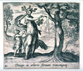 Driope in arboris formam transmigrat (Driope Changed into a Lotus Tree), pl.87 from the series Ovid's Metamorphoses