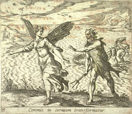 Coronis in cornicem transformatur (The Daughter of Coroneus Changed into a Crow), pl. 15 from the series Ovid's Metamorphoses