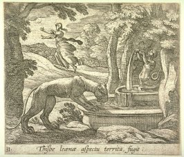 Thisbe leonoe aspectu territa fugit (Thisbe Running from the Lioness at the Well), pl. 31 from the series Ovid's Metamorphoses