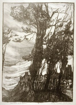 Ash Trees and Storm