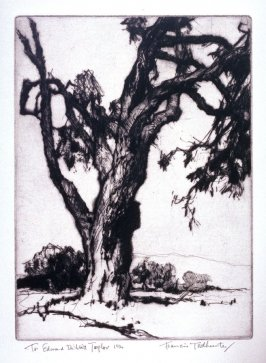 Untitled (Landscape with old tree in foreground)