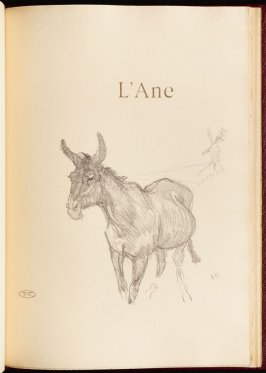 """""""L""""Ane"""" (the donkey) in the book Histoires naturelles (Natural History) by Jules Renard (Paris: Henri Floury, 1900)."""