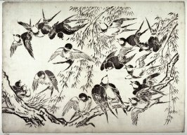 Swallows in a Willow Tree