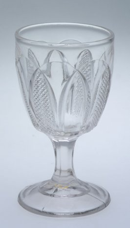 Wine glass Teasel