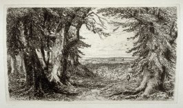 Burnham Beeches, plate 18 in the book, The Etcher (London: Sampson Low…, 1880), vol. 2 [bound in same volume as vol. 1, 1879]