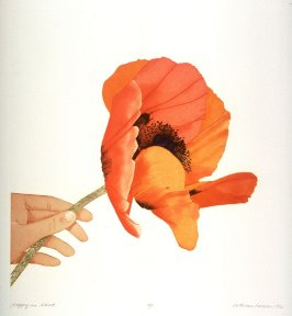 Poppy in Hand, pl. 3, from the portfolio, Poppies and Peony