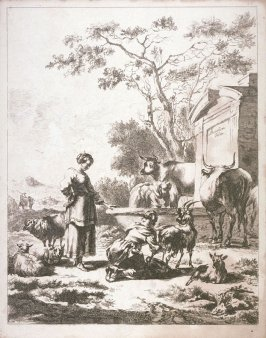 [Woman standing near fountain surrounded by cattle]]