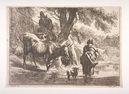 [Woman, dog and cow wading in the water]