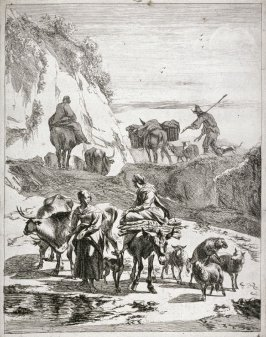 [Woman on mule talking to a woman near a waterhole surrounded by animals]