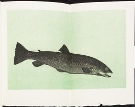 Untitled, in the book The Art of Trout Fishing on the Rapid Streams by H. C. Cutcliffe (Devon: Chevington Press, 1982)