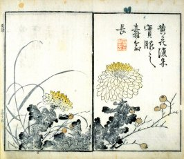 Chrysanthemums and Berries - from: The Mustard Seed Garden Manual of Painting, Volume II (on Orchids, Bamboo, Plums and Chrysanthemums)