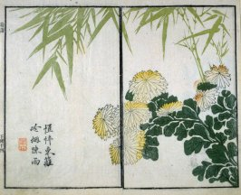 Bamboo and Chrysanthemum - from: The Mustard Seed Garden Manual of Painting, Volume II (on Orchids, Bamboo, Plums and Chrysanthemums)
