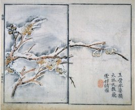 Plum Blossom in Snow - from: The Mustard Seed Garden Manual of Painting, Volume II (on Orchids, Bamboo, Plums and Chrysanthemums)