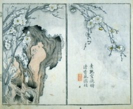 Plum Blossom and Rock in Snow - from: The Mustard Seed Garden Manual of Painting, Volume II (on Orchids, Bamboo, Plums and Chrysanthemums)