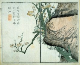 Plum Blossom anf Rocky Cave- from: The Mustard Seed Garden Manual of Painting, Volume II (on Orchids, Bamboo, Plums and Chrysanthemums)