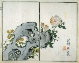 Chrysanthemums - from: The Mustard Seed Garden Manual of Painting, Volume II (on Orchids, Bamboo, Plums and Chrysanthemums)