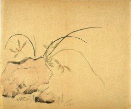 """Growing on a Rock"", No.27 from the Volume on Orchids - from: The Treatise on Calligraphy and Painting of the Ten Bamboo Studio"
