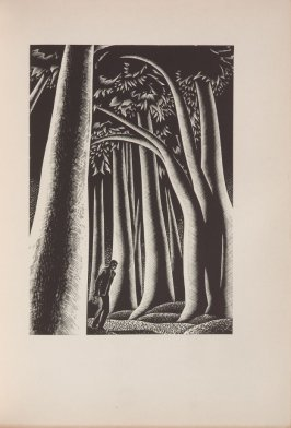 Untitled, illustration 20, in the book Wild Pilgrimage by Lynd Kendall Ward (New York: Harrison Smith & Robert Haas, 1932)