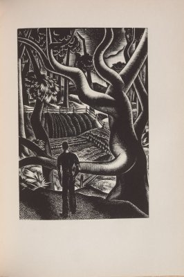 Untitled, illustration 47, in the book Wild Pilgrimage by Lynd Kendall Ward (New York: Harrison Smith & Robert Haas, 1932)