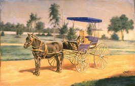 Pony and Buggy