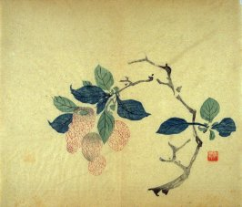 Curved branch of litchi nuts, No.20 from Volume I(1+2) on Miscellaneous Subjects - from: The Treatise on Calligraphy and Painting of the Ten Bamboo Studio