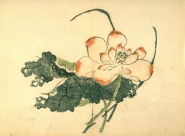 Single Lotus Blossom and Leaf, No.6 from Volume I(1+2) on Miscellaneous Subjects - from: The Treatise on Calligraphy and Painting of the Ten Bamboo Studio