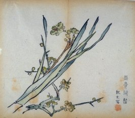 Plum Branch and Narcissus, No.15 from the Volume on Plums - from: The Treatise on Calligraphy and Painting of the Ten Bamboo Studio