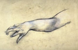 [Study of Arm] - One from the Studies and Sketches for the Murals in the New Amsterdam Theatre, New York