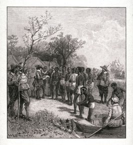 Introduction of Negroes