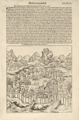 City of Constantinople (recto), from Hartmann Schedel, Nuremberg Chronicle (Liber chronicarum) (Nuremberg: Anton Koberger, 1493)