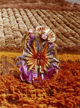 Photograph: Harvest (from I Ching)